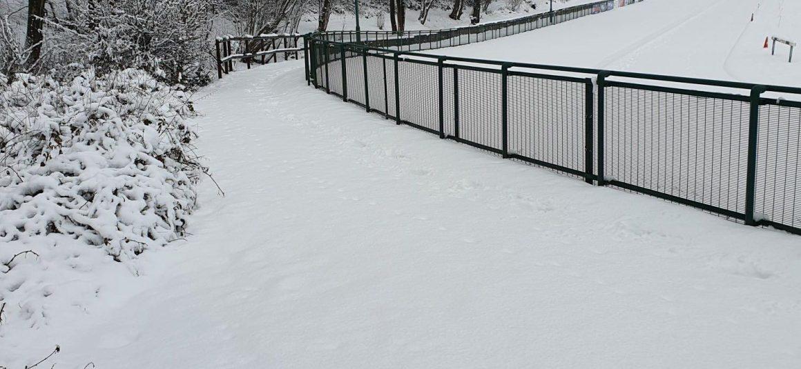 A snowy socially distanced Sunday!